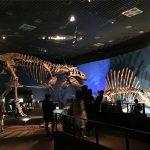 恐竜博2016・上野国立科学博物館