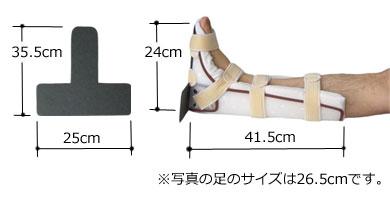 フートボードはフリーサイズです。写真の足のサイズは26.5cmです。足のサイズが23cmを超える方はつま先がはみ出ます。つま先がはみ出る方は、掛け布団の重みがつま先を圧迫し痛みの発生につながりますので、掛け布団を膨らますように掛けるなどして、直接つま先に負荷のかからないような工夫をしてください。
