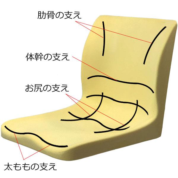 PAS車いすモールドシートの3D構造
