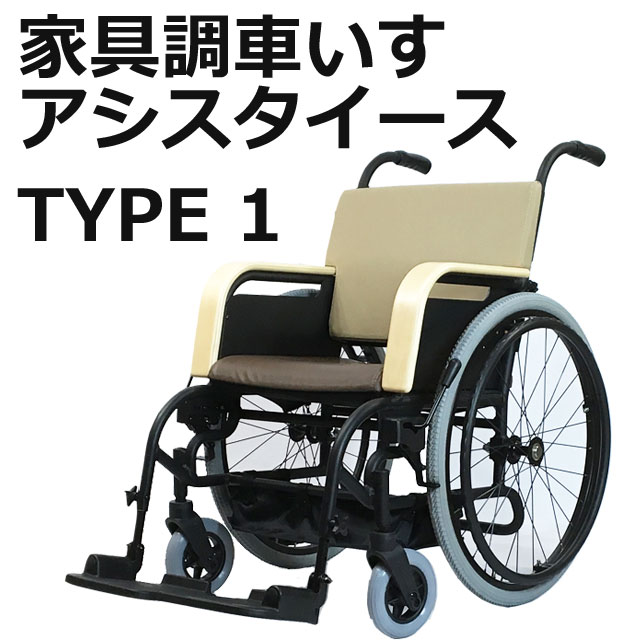 アシスタイースTYPE1